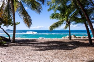 surf spots in puerto rico